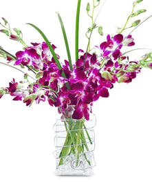 Tropical Dendrobium Orchids with Lily Grasses in a stunning bouquet