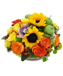 Yellow sunflowers and orange roses accented with bright green apples
