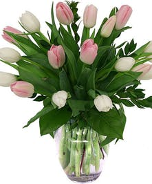 Easy, breezy Tulips...always a favorite!