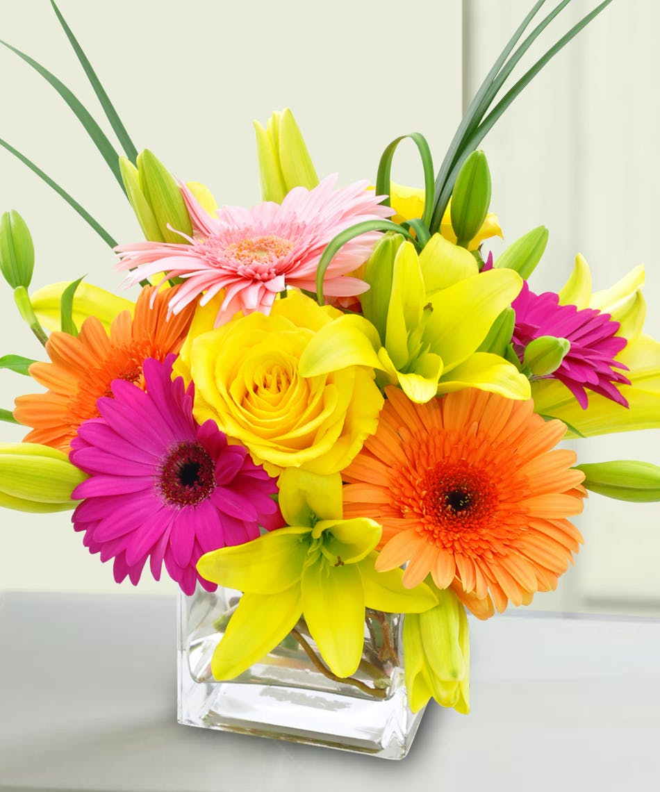 Citrus pop colorful bagoys florist home anchorage alaska citrus colors of gerbera daisies lilies and roses in cube vase izmirmasajfo