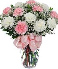 Pink and white Carnations with Babies Breath in glass vase