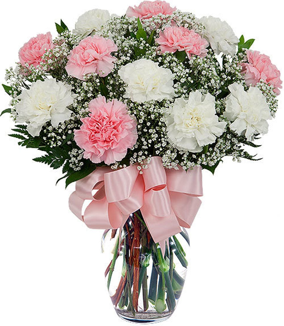 Carnation Fluff Fun Pink And White Carnations With Babies Breath