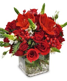 Red Spray Roses, Berries and Amaryllis in cube glass vase
