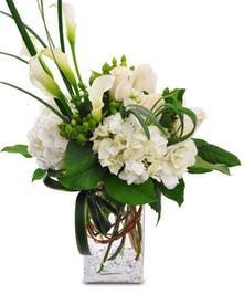 White calla lilies, hydrangea and roses in vase