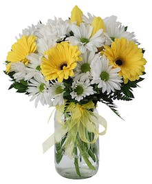 Gerberas, daisy-poms and tulips in a mason-style jar
