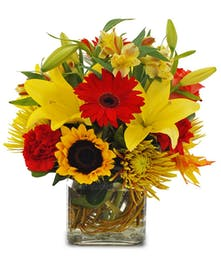 Red Gerbera Daisies, carnations, yellow lilies and sunflowers in vase