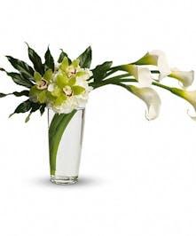 White Calla Lilies, Hydrangea, green Cymbidium Orchids in vase