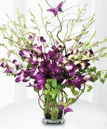 Purple dendrobium orchids stand tall in a vase wrapped with willow