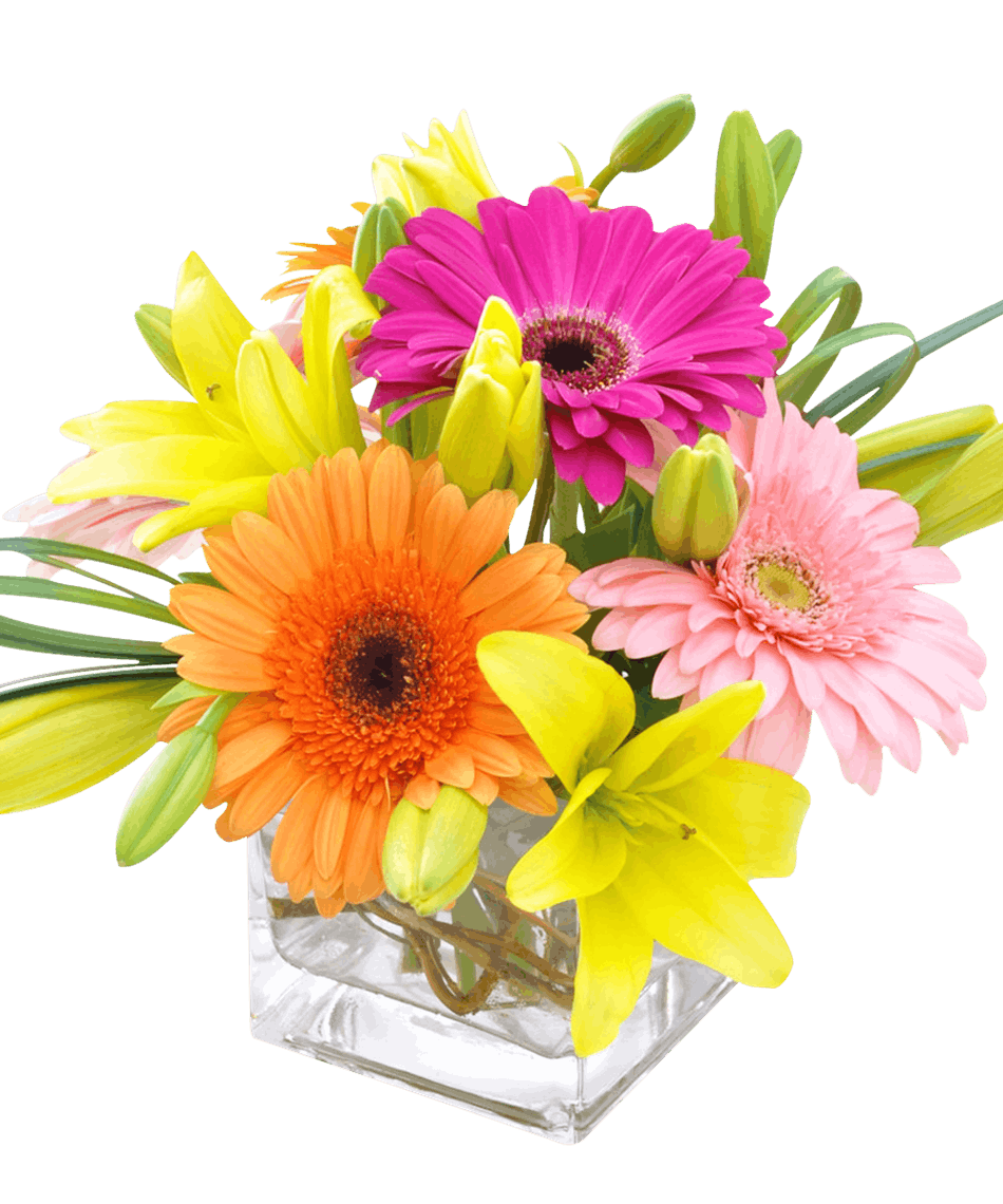Candy cube colorful bagoys florist home anchorage alaska gerbera daisies asiatic lilies and bright greens arranged in a glass cube vase izmirmasajfo Images