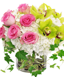 Roses, hydrangea and cymbidium orchids with trailing ivy in vase