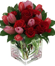 Berry-colored roses and tulips, precisely arranged in cube glass vase
