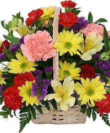 Colorful variety of carnations and daisies in handle basket