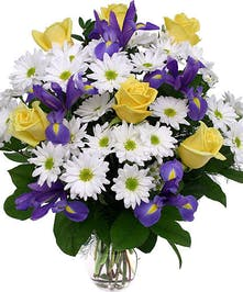 A full and round arrangement of daisies, iris and roses