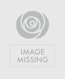 White tulips, white roses, white calla lilies
