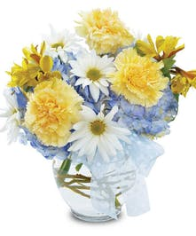 Yellow, blue and white carnations, hydrangea and daisies in vase