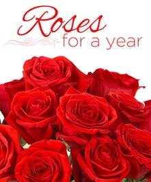 Have one dozen roses delivered every month for a year with 12 card messages starting today!