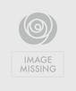 As Shown--36 Roses