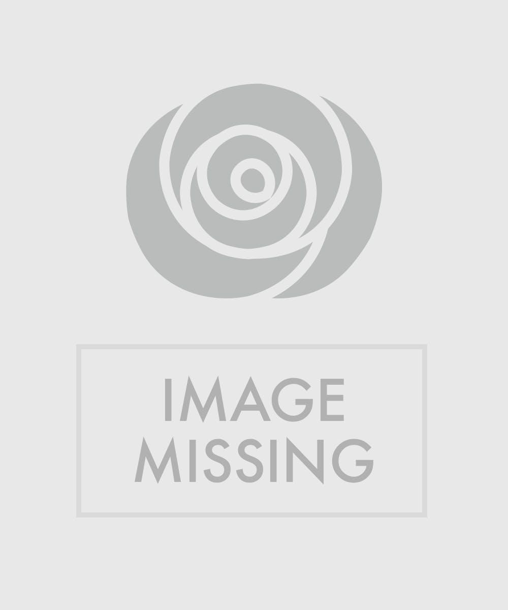 Hawaiian Garden - Tropical - Bagoy\'s Florist & Home - Anchorage Alaska